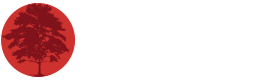 syndicate bluff logo